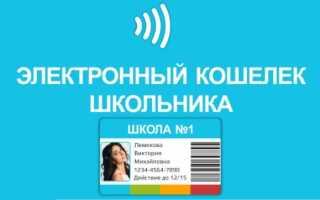 Электронный кошелек школьника
